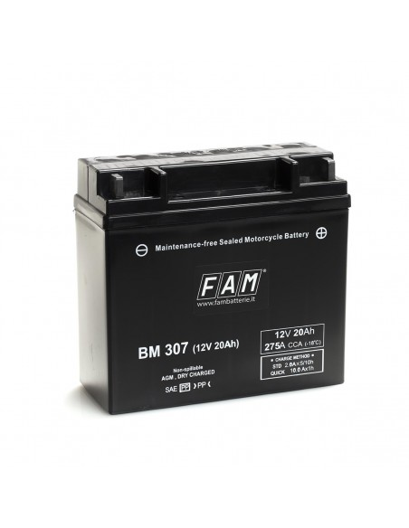 Batteria BM 307