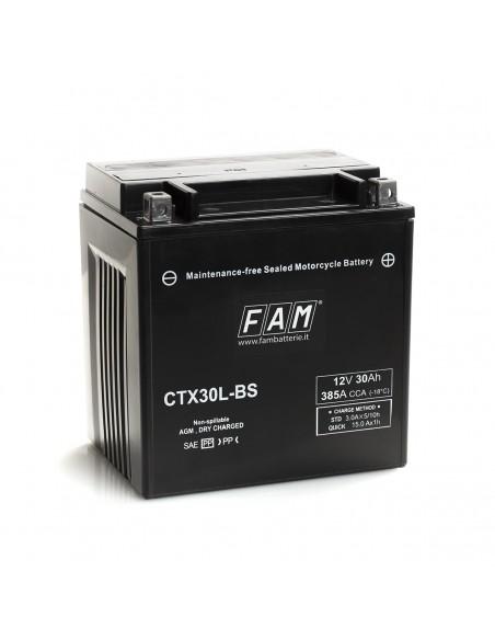 Batteria BM 310